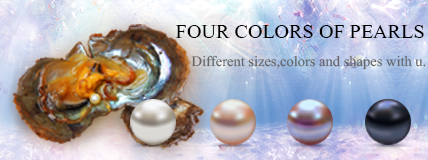 pearl oyster, akoya pearl oyster, oval pearl oyster, round pearl oyster